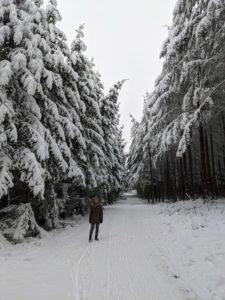 Winter Ferienehaus Schieferterrasse