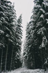 Wintersportgebiet Hohe Acht